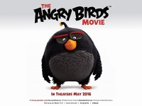 Film review: Angry Birds